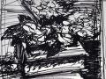 Felt tip sketch Begonias, The Cedars
