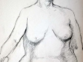 Charcoal drawing female nude