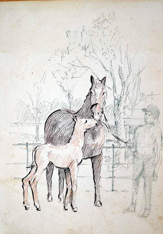Drawing Caro & horses