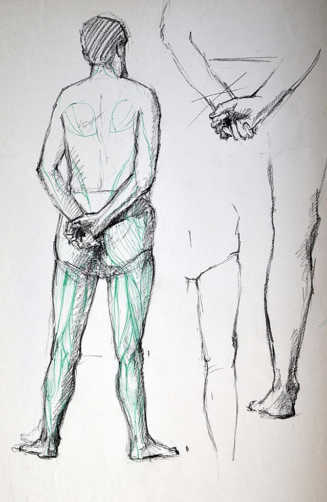 Rough sketch, Nude standing, muscles