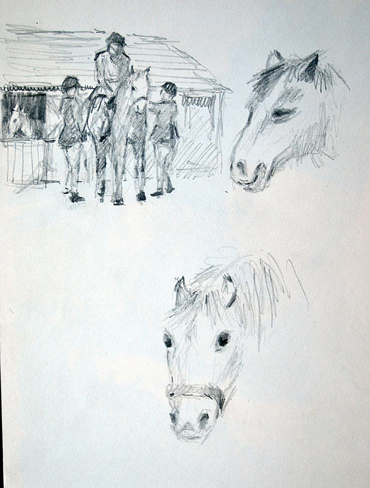 Rough Sketch, Silverlands, ponies